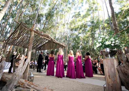 The top 25 most romantic wineland wedding venues for Most romantic wedding venues