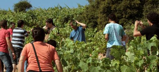 Wine Tourism as a Value Creator photo