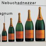 Wine Bottle Sizes photo