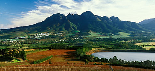 Winter in Franschhoek photo