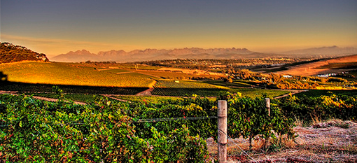 South Africa`s Top 10 Wine Routes photo