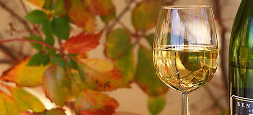 Chenin Blanc is a torchbearer and signature for South African white wine photo