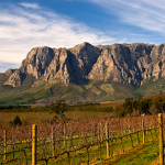 Under-the-Radar Wine Regions You Should Be Drinking From Now photo