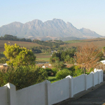 Dundee businessman to sell troubled South African vineyard photo