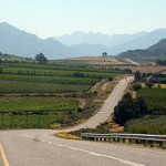 The world's longest wine route photo
