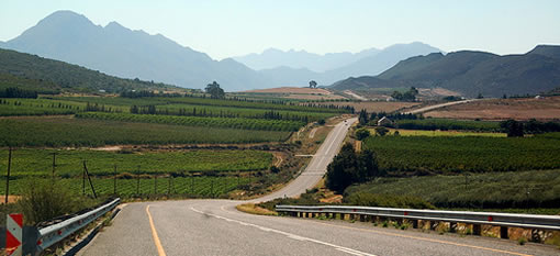 The world's longest wine route photo