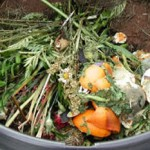 Wine and beer can be used as compost photo