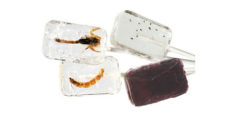 Vodka and Tequila Flavoured Insect Lollipops photo