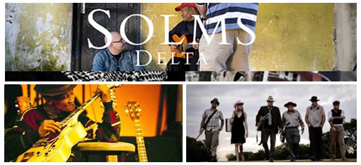 Solms-Delta Summer Concerts photo