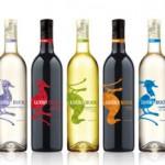 Lucky Duck Wines photo