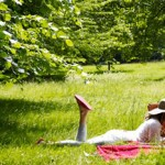 Bring your Valentine to Backsberg for a Gourmet Picnic and a bottle of Rosé photo