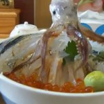 Dancing Squid rice bowl. How to reanimate your food. photo