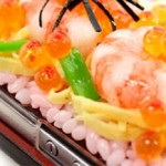 Japanese Food iPhone Cases photo