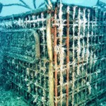 Does aging wine under water have benefits or is it going overboard? photo