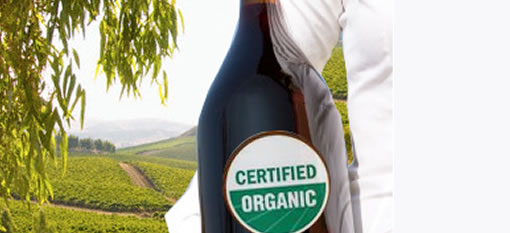 Is organic REALLY no healthier? photo