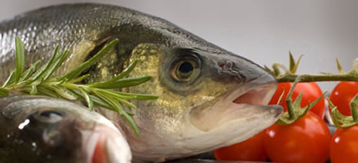 Can eating fish save you from getting a stroke? photo