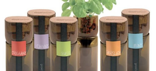 GrowBottle Upcycles Wine Bottles Into Planters for Hydrogardens photo