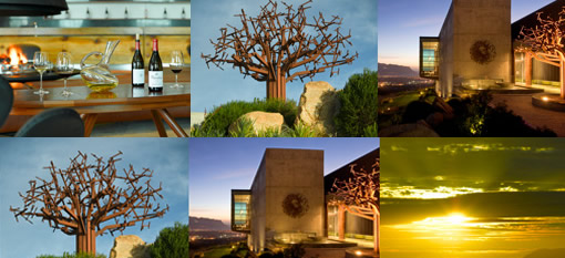 Waterkloof still SA`s Best Architecture and Landscapes champion photo
