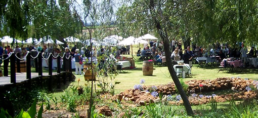 Riesling Rocks returns to Hartenberg Wine Estate (25 January 2014) photo