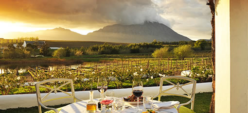 A journey through South Africa's stunning wine region photo