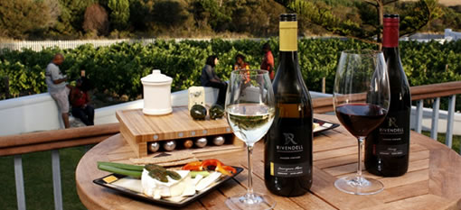 Wine tasting, Cheese tasting, Olive oil tasting at Franschhoek