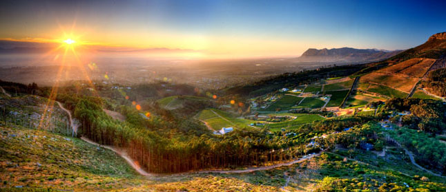 Constantia Glen South Africas great wine photo