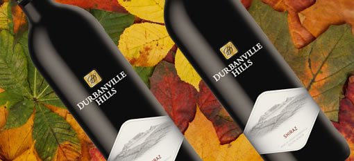 Wine of the week: Durbanville Hills Shiraz 2011 photo