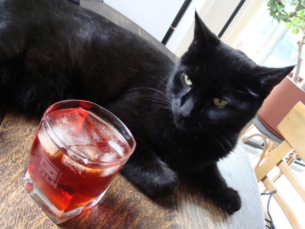 The Black Cat Cocktail for Friday the 13th photo