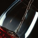 Drink Red Wine to Lose Weight photo