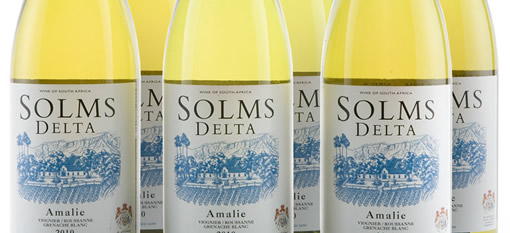 Solms-Delta wins Gold at Michelangelo awards photo