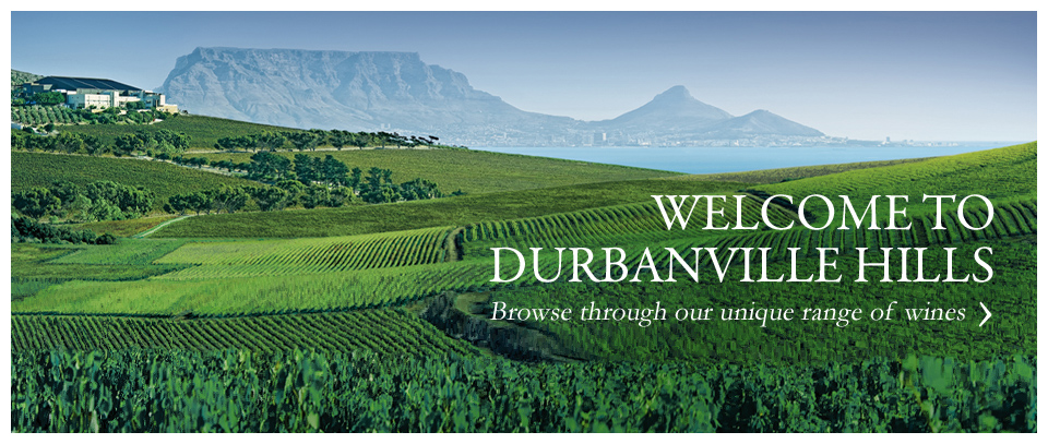 Global Success For Durbanville Hills Winery photo