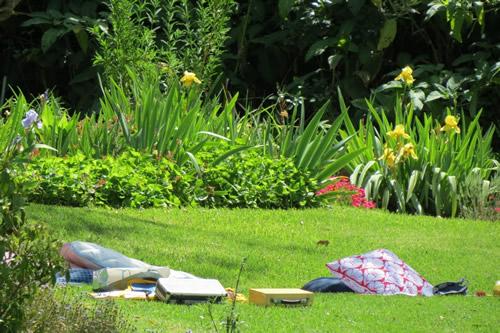 Lazy Summer Days at Hartenberg photo