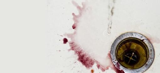 Australians to pour a million bottles of wine down the drain photo
