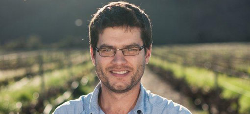 uniWines Vineyards Predicts Later Harvest of Flavour and Quality photo
