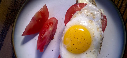 Tomato, Brie and Egg on Rye Toast photo