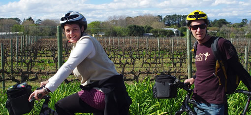 Steenberg Wine and Ride photo