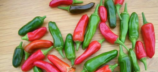 10 Fascinating Facts about Chillies photo