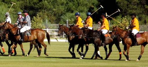 Veuve Clicquot Masters Polo – A Stylish Affair photo