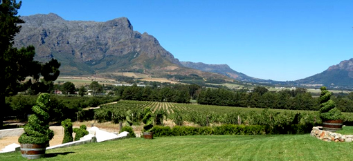 Exploring Franschhoek`s Methode Cap Classique Route photo
