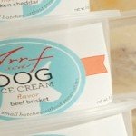 Meat Flavoured Ice Cream for Dogs photo