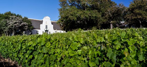 Where to eat out in the Winelands photo