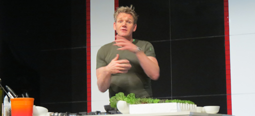 Meeting Gordon Ramsay photo