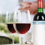 Vinderpants, Underpants for Your Wine Bottle photo