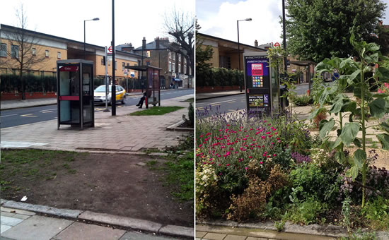 The Incredible, Edible Bus Stop photo