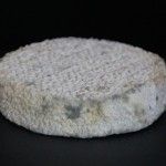 Artisanal Cheeses Created From Human Body Bacteria Samples photo