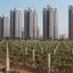 Will China Dominate The Wine Industry Too? photo