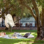 Blissful Summer Picnic at Durbanville Hills Wines photo
