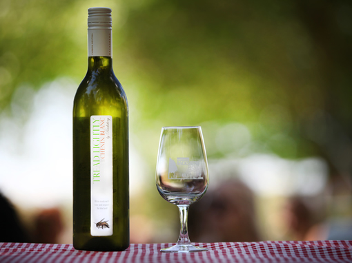 Tread Lightly wins BWI Best Value White Wine at the Nedbank Green Wine Awards photo