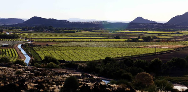 orange river landscape Oe LA LA: Orange River Wine Cellars takes Gold at International Competition for  Muscat Wines