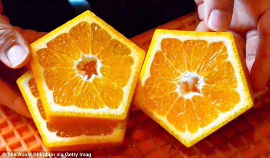 Farmers in Japan create pentagon-shaped fruits photo